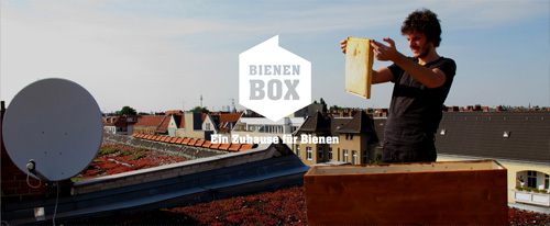 BienenBox_NBAnner_01